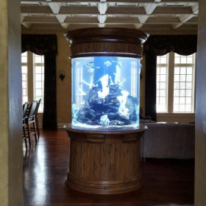 Custom Aquarium Design by Living Art Aquatics