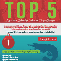 Infographic displaying our top picks for aquarium-related gift ideas.