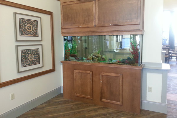 Picture of a commercial aquarium in an assisted living home.