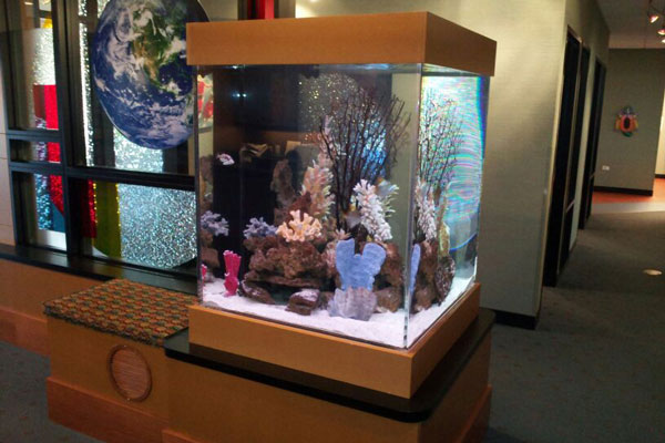 Picture of a commercial aquarium in a dentist office lobby.