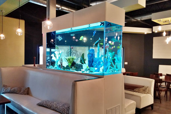 Picture of a commercial aquarium in a restaurant.