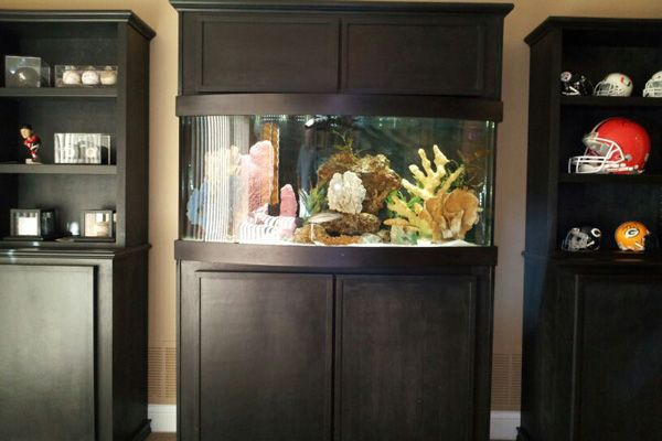 Picture of a home aquarium mounted in black cabinetry.
