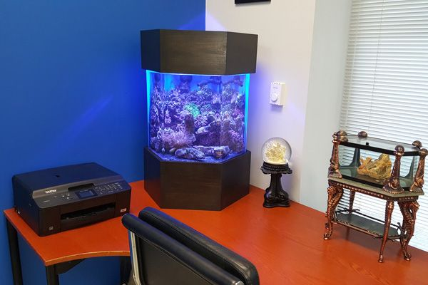 Picture of a home aquarium sitting atop an office desk.